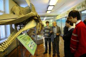 Воспитанники ХДС  в музее природы